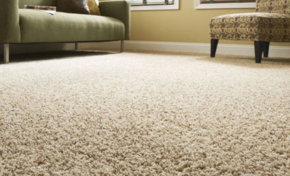 Cream colored carpet flooring